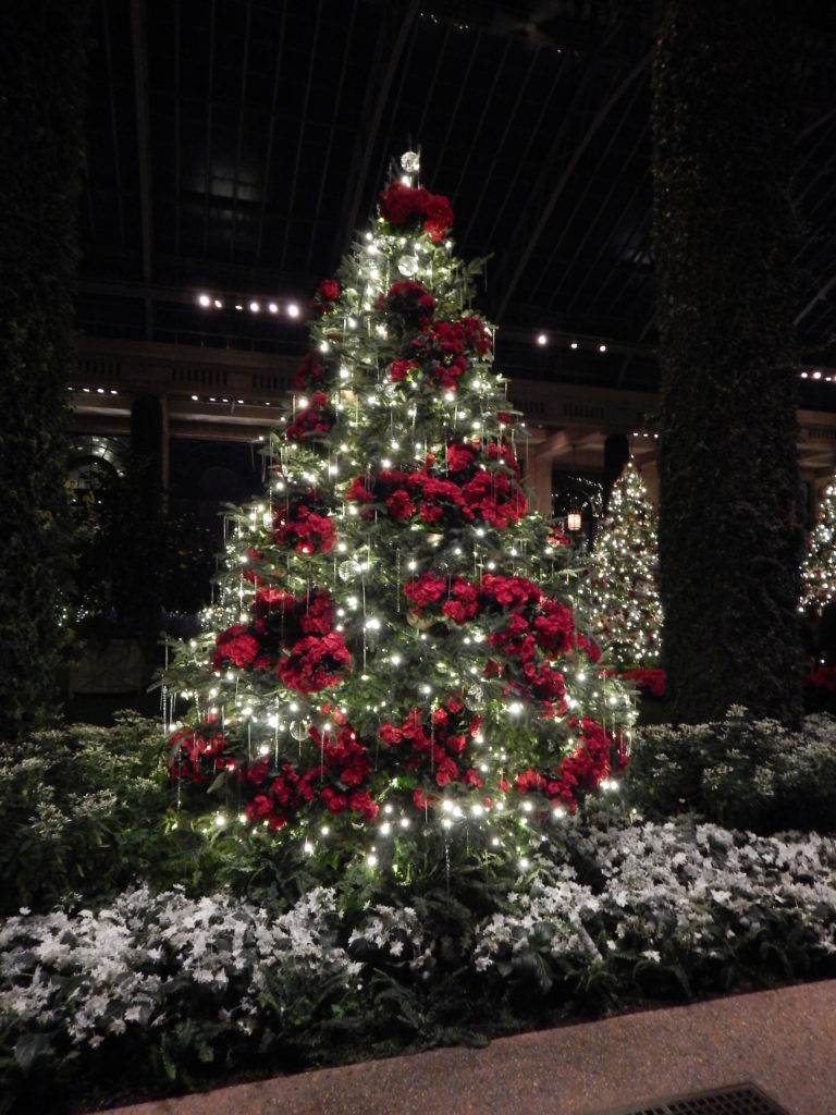 Christmas At Longwood Gardens Flights Of Fancy Mom